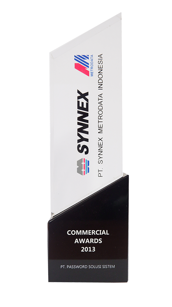 Synnex Commercial Award 2013